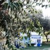Village Camping Due Elle (CS) Calabria